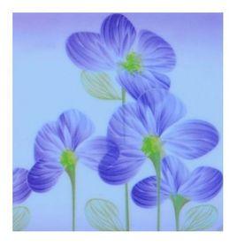 Naklejki na kontakt Kwiaty SS-0001