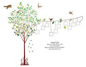 Naklejka na ścianę Drzewo, Zdjęcia WS-0094