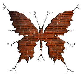 Naklejka na ścianę Motyl WS-0204