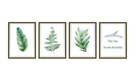 Naklejki na ścianę Obrazy Rośliny WS-0269
