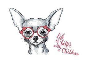 Naklejki na ścianę Pies Chihuahua WS-0311