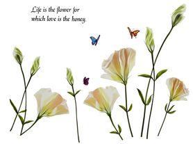 Naklejka na ścianę Białe Kwiaty WS-0066